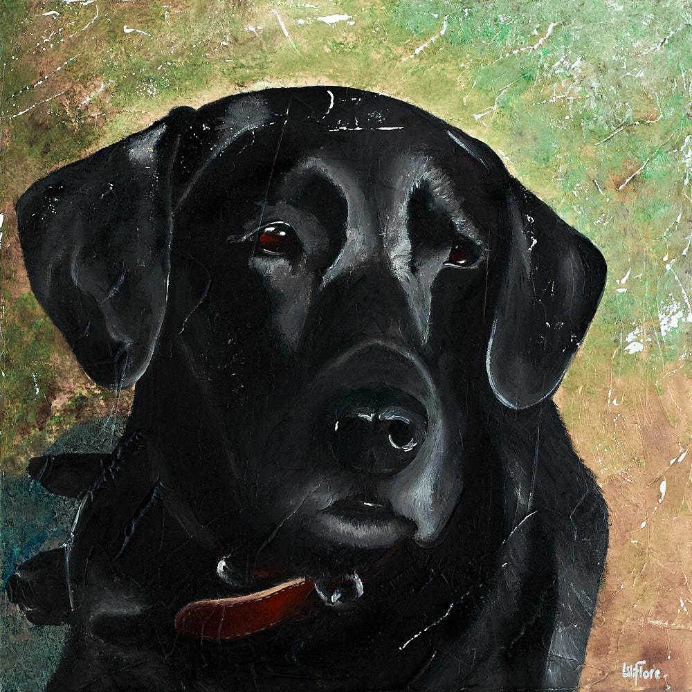 Peinture de Benz, chien d'une amie. Acrylique sur toile. Commande disponible. Par LiliFlore, Montréal.