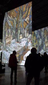 van-gogh-exposition-immersive-montreal-liliflore